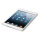 CornerCase for iPad Mini Retina - transparent